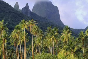 Hawaii On Three Islands - A Fairy Tale Without End