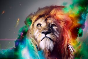 Cool Lion Art