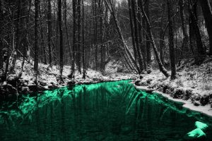 Green Nature Forests Outdoors Selective Coloring Rivers