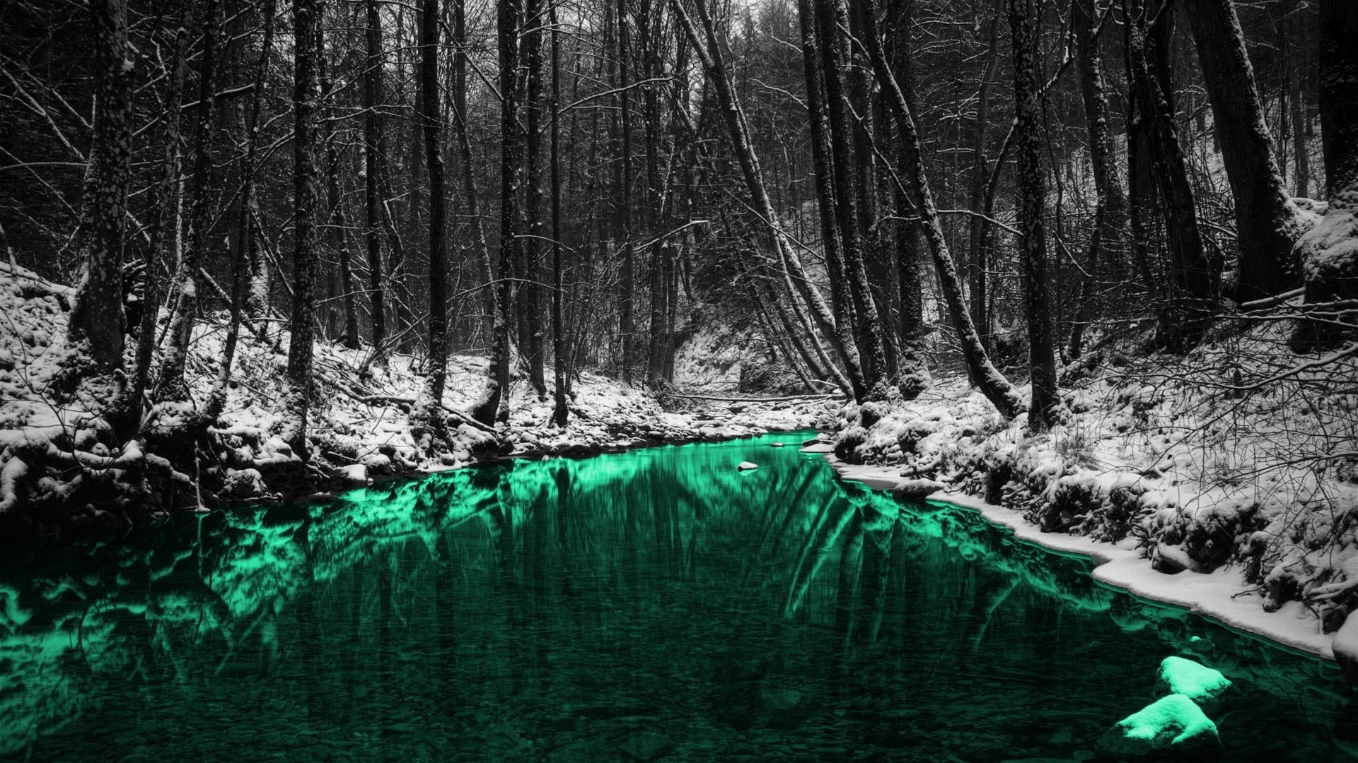 Green Nature Forests Outdoors Selective Coloring Rivers Wallpaper 1920x1080 px